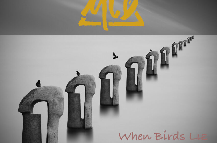 MCD – When Birds Lie feat. Eleftheria Lanari